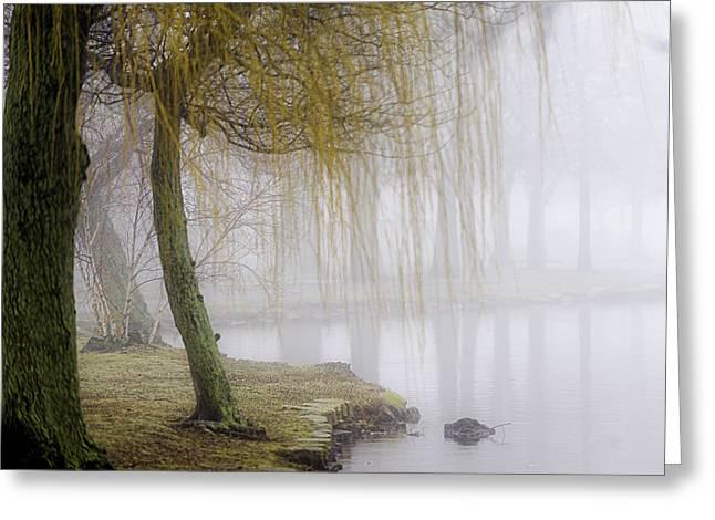 Foggy Lake Morning Greeting Card by Vicki Jauron