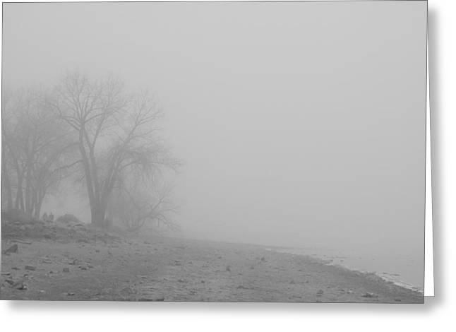 Foggy Lake Shoreline View Bw  Greeting Card by James BO  Insogna