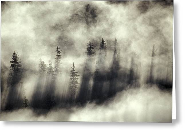 Foggy Landscape Stephens Passage Greeting Card by Ron Sanford