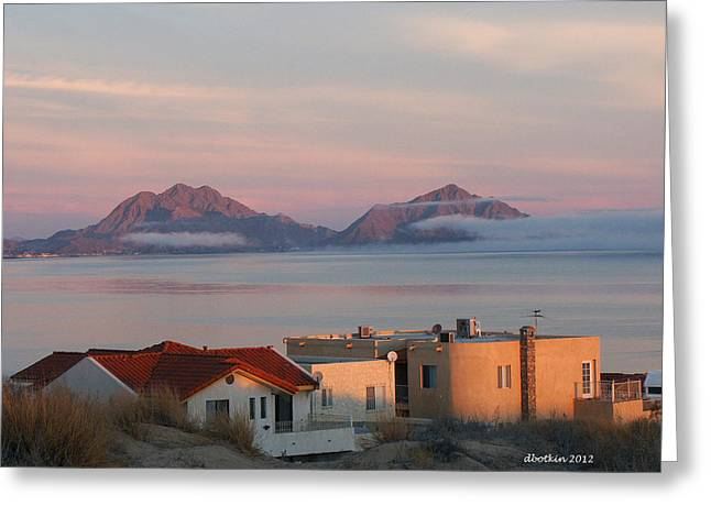 Foggy Morn Greeting Card by Dick Botkin