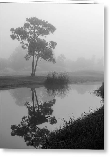 Foggy Morning 2 Greeting Card