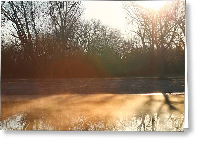 Greeting Card featuring the photograph Foggy Morning by Alicia Knust