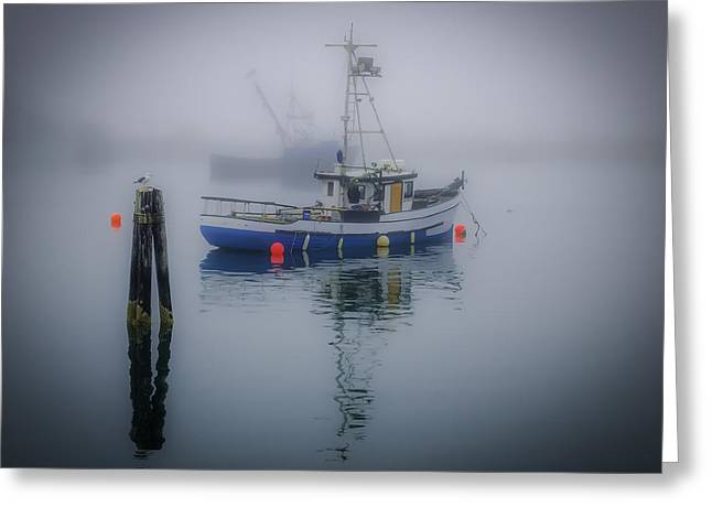 Foggy Morning At Rest Greeting Card