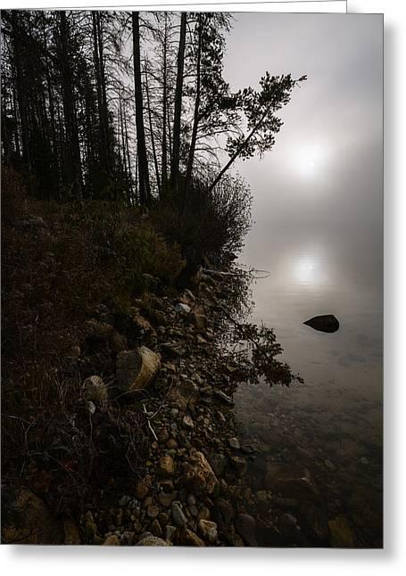 Foggy Morning At Stanley Lake Greeting Card by Vishwanath Bhat
