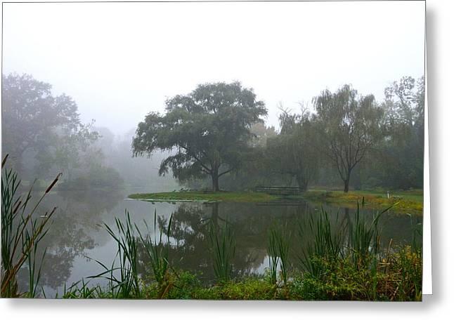 Foggy Morning At The Willows Greeting Card