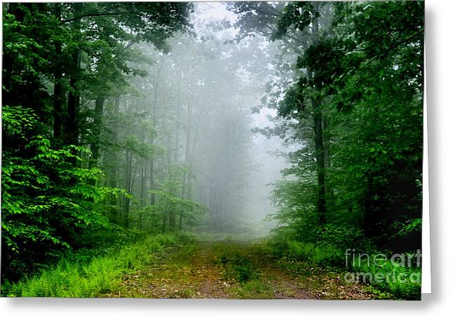 Greeting Card featuring the photograph Foggy Morning by Debra Fedchin