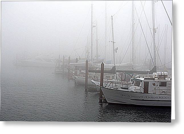 Foggy Morning In Charleston Harbor Greeting Card