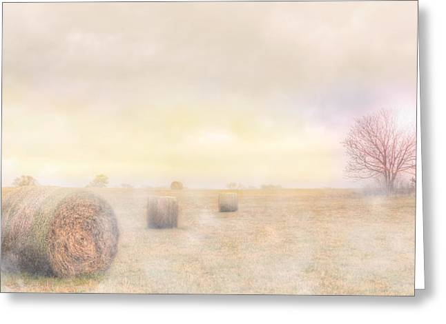 Foggy Morning In Sc Greeting Card by Brent Craft