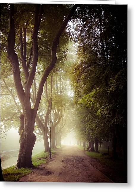 Foggy Morning In The Nesvizh Park Greeting Card