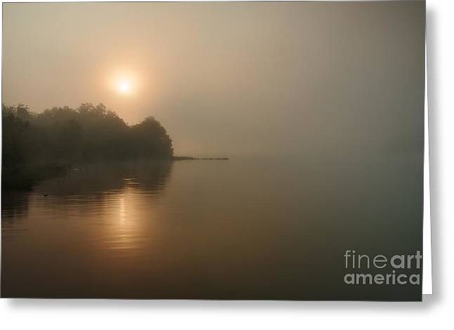 Foggy Morning Greeting Card by Larry McMahon