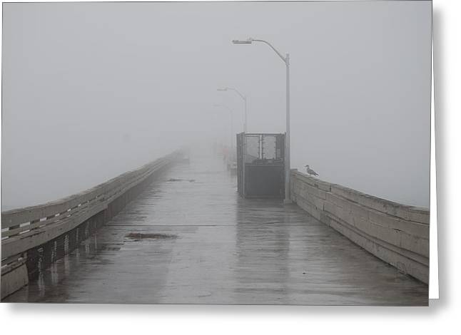 Foggy Morning Greeting Card by Pamela Schreckengost