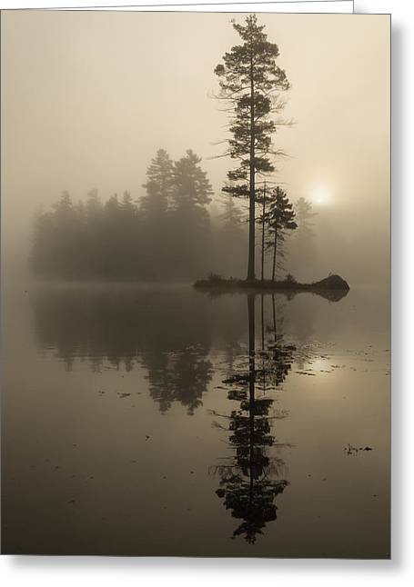 Foggy Morning Sunrise At The Lake Greeting Card