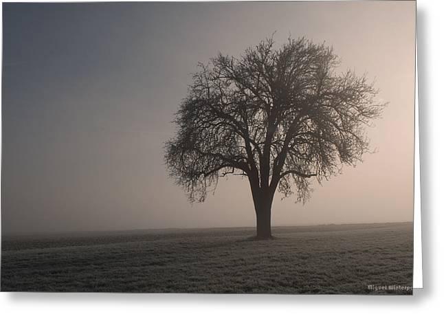 Foggy Morning Sunshine Greeting Card
