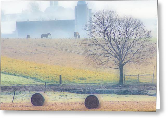 Foggy Morning Greeting Card by Thomas  MacPherson Jr
