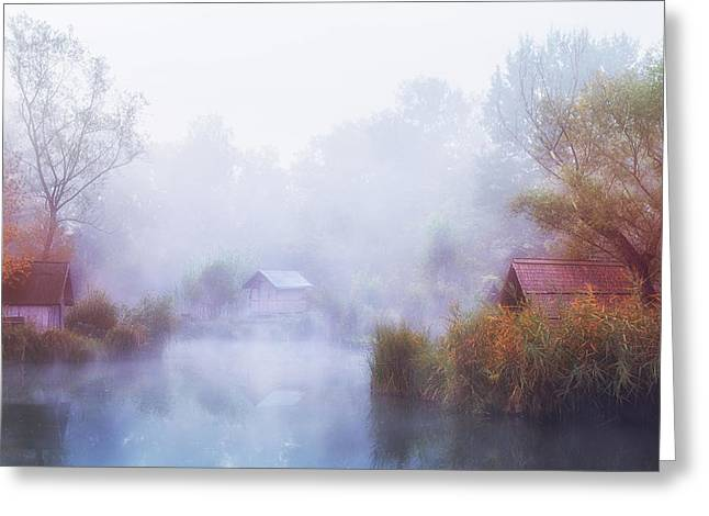 Foggy Mornings On The Lake Greeting Card