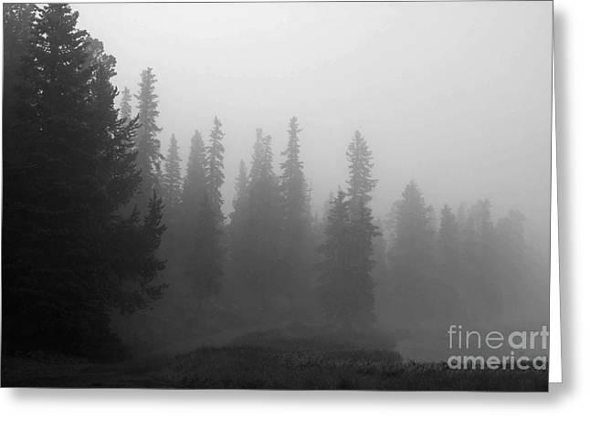 Foggy Mt Evans Greeting Card