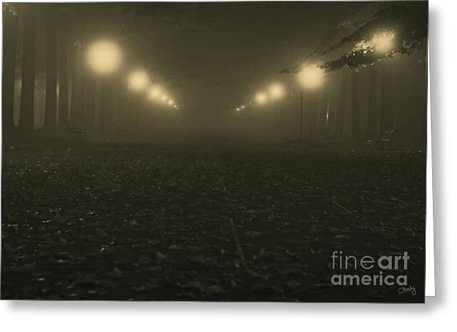 Foggy Night In A Park Greeting Card