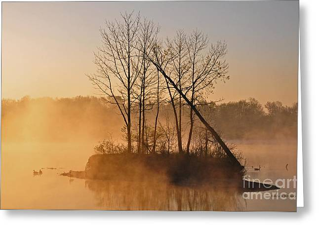 Foggy Ohio Morning Greeting Card