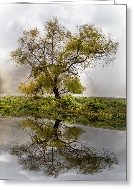 Foggy Reflections Greeting Card by Debra and Dave Vanderlaan