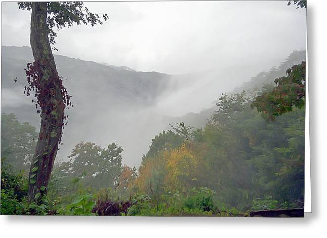 Foggy River Greeting Card by Aimee L Maher Photography and Art Visit ALMGallerydotcom