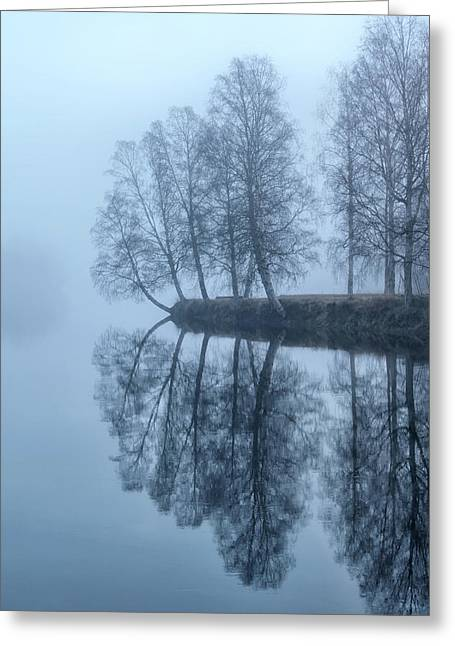 Foggy River Day Greeting Card