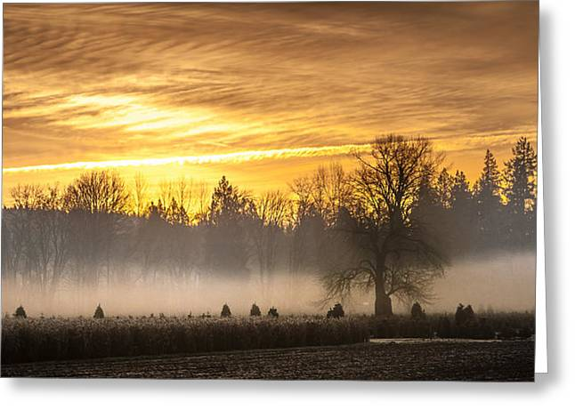 Foggy Sunrise Greeting Card by Cassius Johnson