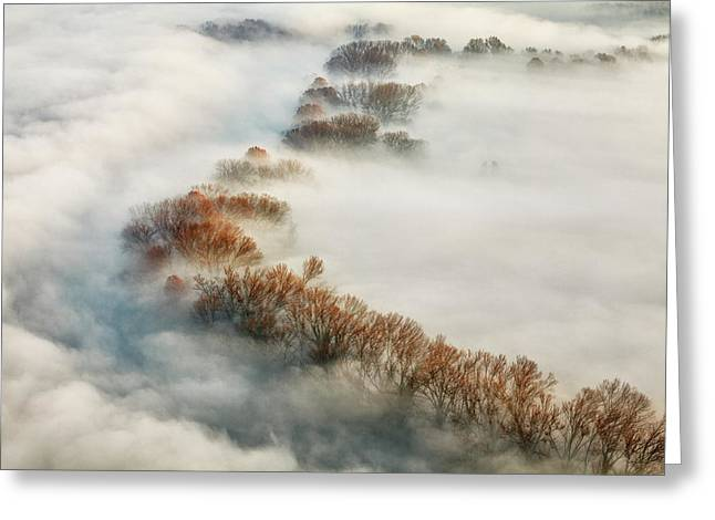 Foggy Valley Greeting Card