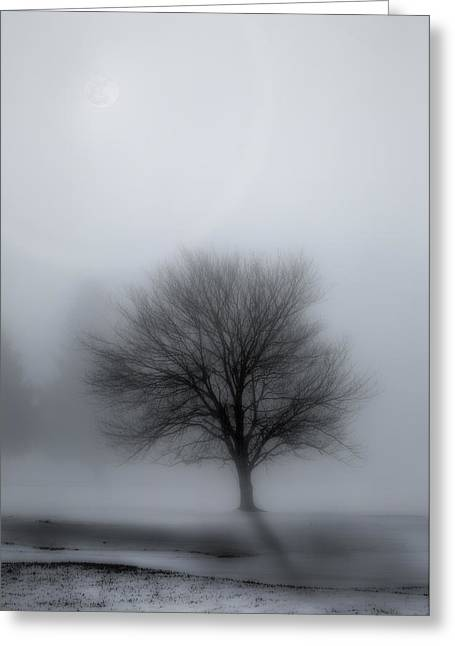 Foggy Winter Night Greeting Card by Bill Wakeley