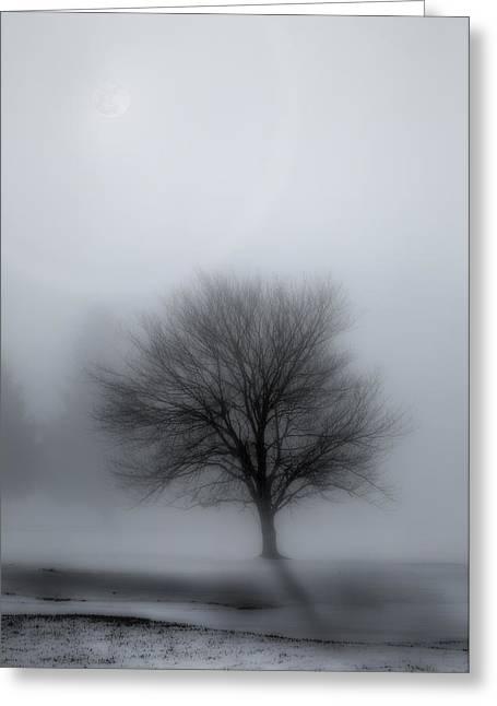 Foggy Winter Night Greeting Card