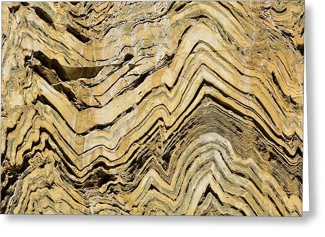 Folded Metamorphic Rock In Kings Canyon Greeting Card by Ashley Cooper