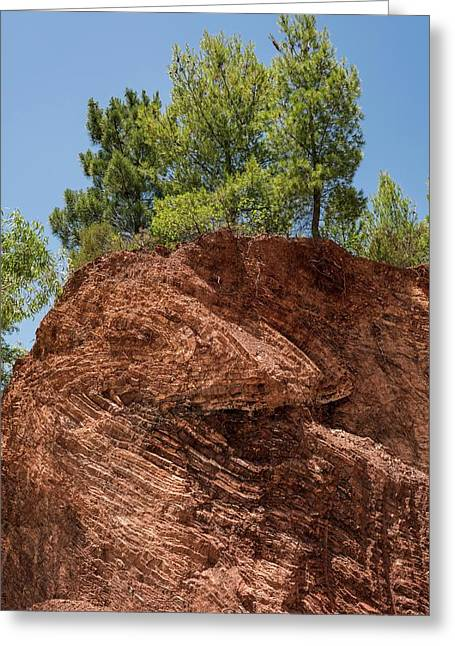 Folded Rock Strata Greeting Card by David Parker/science Photo Library