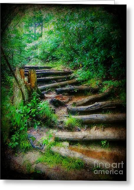 Follow Me To An Adventure Greeting Card by Lorraine Heath