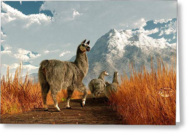 Follow The Llama Greeting Card