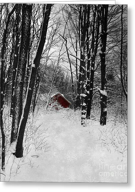 Follow The Snowflake Trail Greeting Card