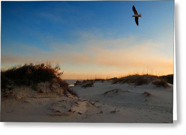 Greeting Card featuring the photograph Follow Your Dreams by Laura Ragland