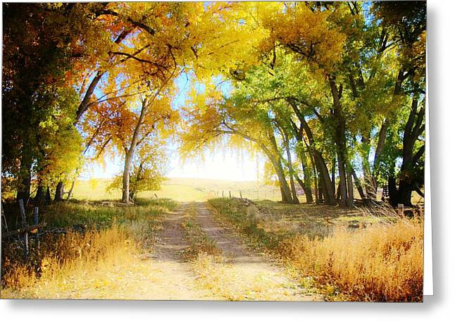 Greeting Card featuring the photograph Follow Your Heart by Shirley Heier