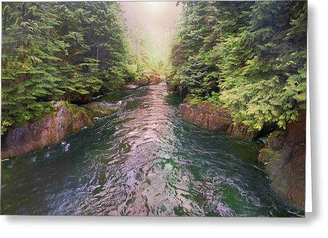 Following The Flow Greeting Card by David M ( Maclean )