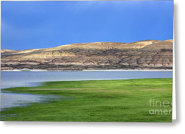 Fontenelle Reservoir Summer Thunderstorm  Greeting Card by Gary Whitton
