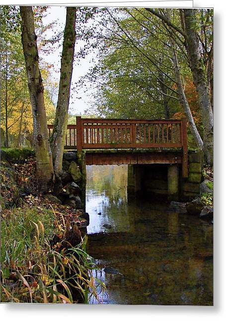 Foot Bridge Greeting Card by Ron Roberts