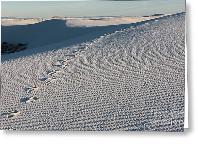 Foot Prints In The Sands Greeting Card