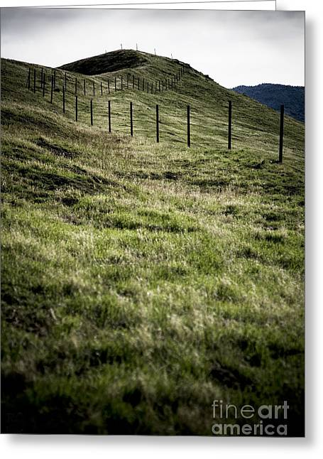 Foothills Of The Tehachipis Greeting Card by Rich Collins