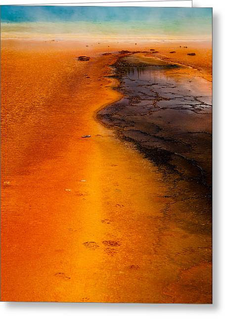 Footprints And Reflections Greeting Card by Shawn Brannon