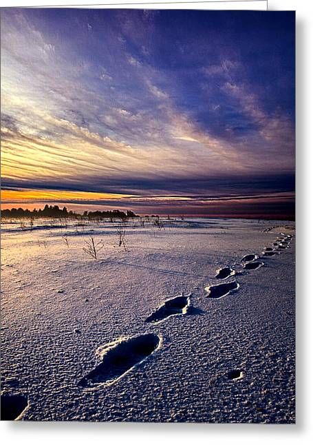 Footprints In The Snow Greeting Card by Phil Koch