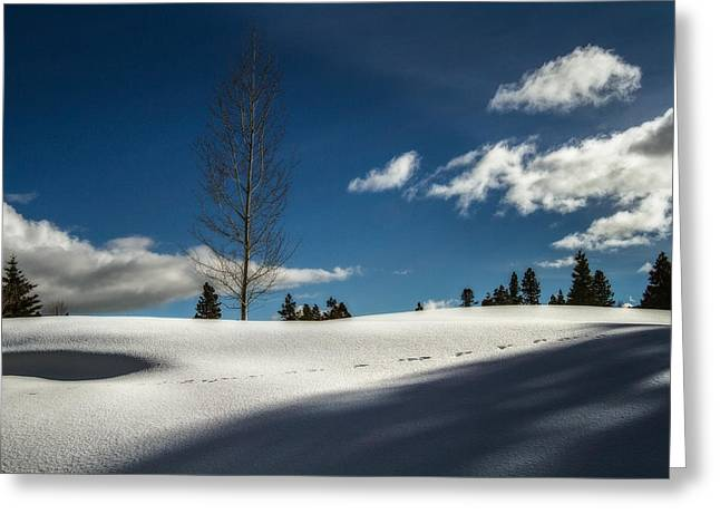 Footprints In The Snow Greeting Card by Randy Wood