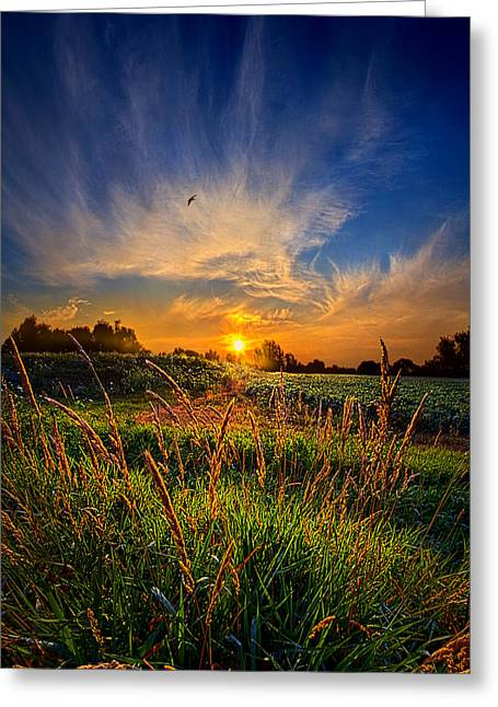 For When The Day Began Greeting Card by Phil Koch