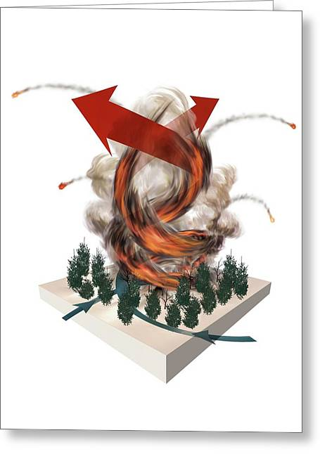 Forest Fire Tornado Greeting Card