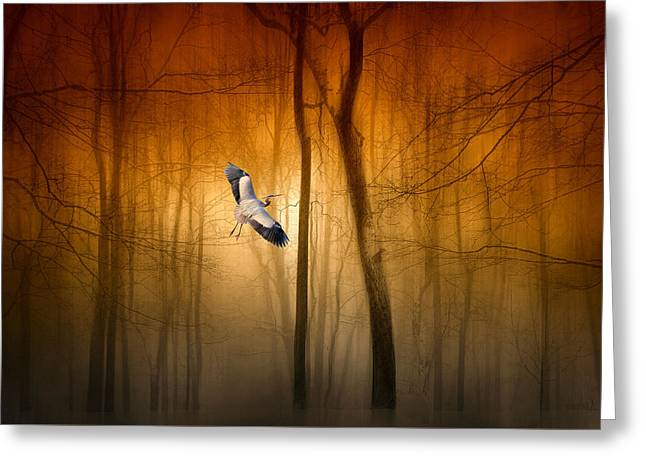 Forest Flight Greeting Card