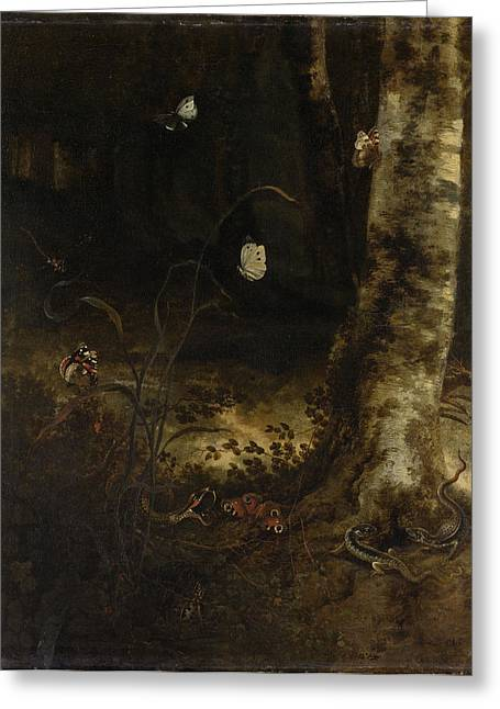 Forest Floor With A Snake, Lizards, Butterflies And Other Greeting Card by Litz Collection