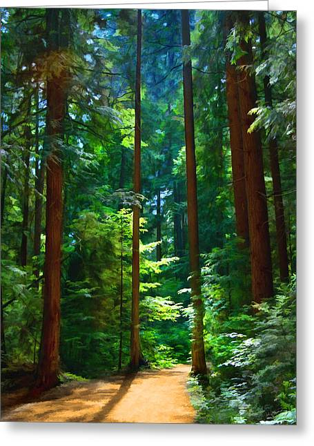 Forest Heights Greeting Card by John Robichaud