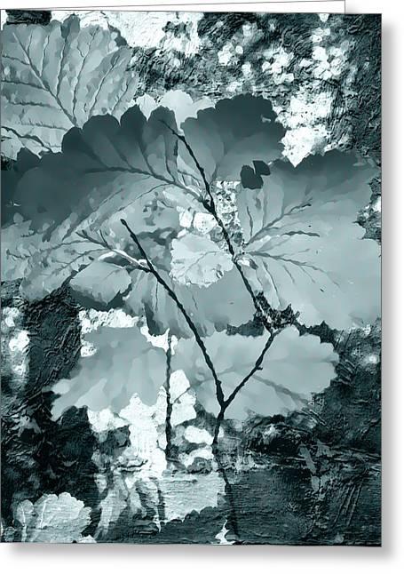 Forest Reach Monochrome Greeting Card by Kathy Bassett